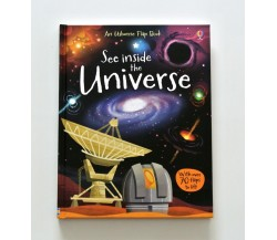 Usborne - See inside the Universe