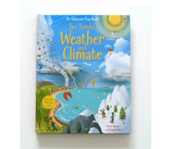 Usborne - See inside weather and climate