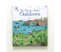 Usborne - Big picture book outdoors