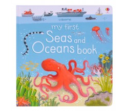 Usborne - My first seas and oceans book